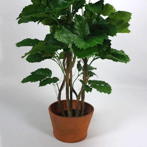 Kunstplant Druivenplant