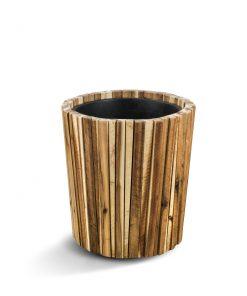Marrona Acacia Pot
